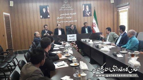 جلسه بررسی روند پرداخت تسهیلات مشاغل خانگی در آزادشهر برگزار شد.