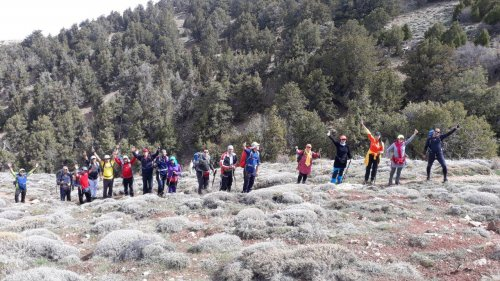 کوهنوردان کارگر استان گلستان به ارتفاعات 3 هزار و 204 متری پیرگرد کوه صعود کردند.