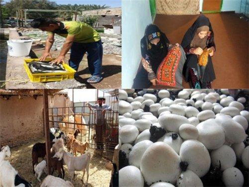 گلستان در جایگاه پنجم کشور در جذب وام اشتغال روستایی