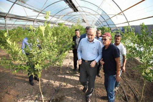 بازدید معاون وزیر تعاون، کار و رفاه اجتماعی از طرح های اشتغال روستایی گلستان