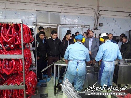 به مناسبت هفته کارآفرینی انجام شد: بازدید دانش آموزان از واحدهای تولیدی نمونه آزادشهر