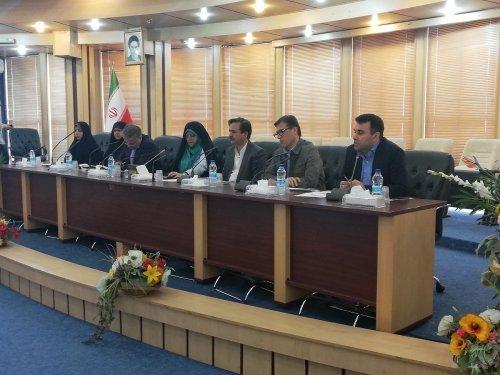 مدیرکل تعاون، کار و رفاه اجتماعی گلستان: نیازمند ورود به صنایع تبدیلی در استان هستیم