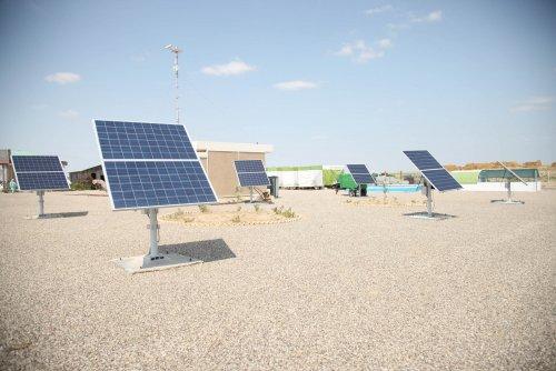 گزارش تصویری بازدید معاون اشتغال وزیر تعاون، کار و رفاه اجتماعی از کشتگاه خورشیدی روستای دوزالوم